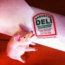 Baguette Deli photo by Jake S.