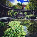 Lan su Yuan Chinese Garden and Teahouse photo by Deric Davis